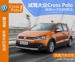 大众Cross Polo图解图片