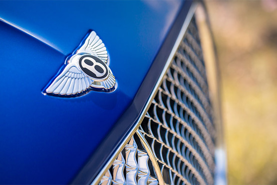 """动力源自全新6.0升双涡轮增压W12 TSI发动机,与双离合八速变速箱紧密配合,0-100公里加速3.7秒,最高时速333公里/小时。先进的48伏主动式侧倾控制系统""""宾利动态驾驶""""(Bentley Dynamic Ride),可控制并调节每个防倾杆的电动执行器,从而提高精准的操控性与驾乘舒适性。"""