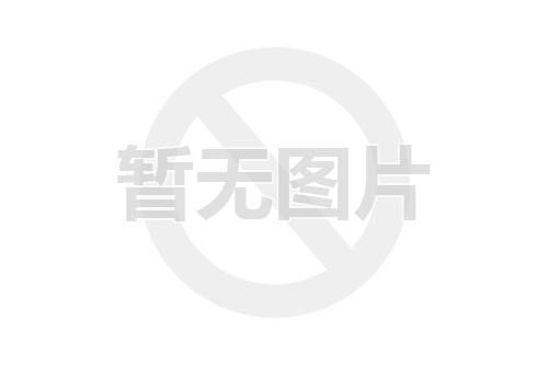 江铃集团轻汽图片
